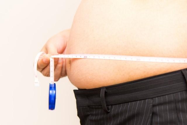 内臓脂肪を減らす運動や腹筋はコレ!皮下脂肪との違いは?