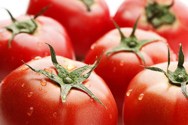 トマトダイエット方法のコツや口コミと痩せない場合の対処法!